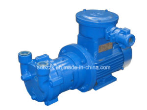 2BV2060-Ex Single-Stage Water Ring Vacuum Pump (price)
