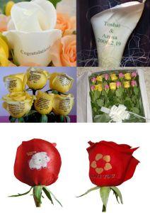 Digital Inkjet Speaking Fresh Red Rose Flower Printer (UN-FL-MN107E) pictures & photos