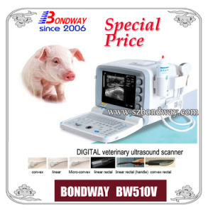 Digital Portable Veterinary Ultrasound Scanner Vet Ultrasound Sonography pictures & photos