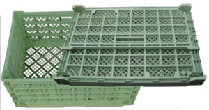 Plastic Mould for Collapsible Crate pictures & photos