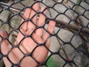 Green Hexagonal Plastic Net pictures & photos
