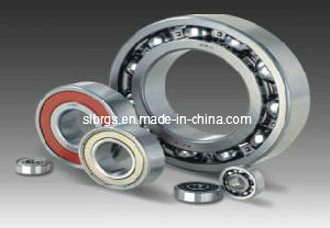 High Load Deep Groove Ball Bearing (6922)