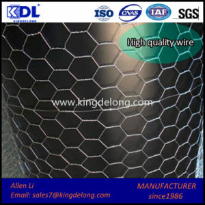 Galvanized Double Twisted Hexagonal Metal Wire Mesh pictures & photos