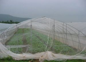 Greenhouse Anti Insect Net/HDPE Net with Anti UV pictures & photos