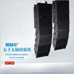 Vera12+ 12 Inch Line Array Sound System DJ Equipment pictures & photos