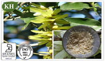 100% Natural Taxifoliol Distylin, Dihydroquercetin: 80%-98% Taxifoliol by HPLC pictures & photos