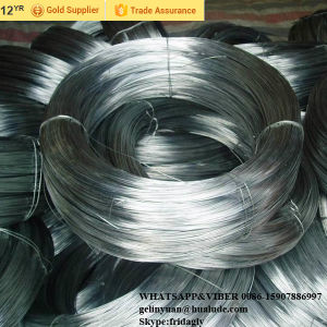 Electro Galvanized Iron Wire, Hot DIP Galvanized Ion Wire for Binding Facotry Price pictures & photos