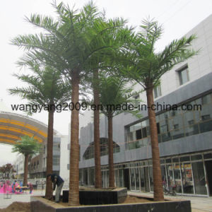 Garden Home Decoration Wholesale Plastic Outdoor Fake Coconut Palm Tree pictures & photos