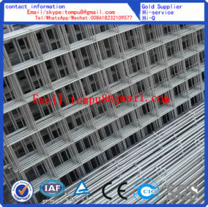 Welded Wire Mesh Roll and Piece pictures & photos
