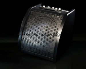 "10"" Professional Drum Amplifier with 3"" Tweeter Speaker (DM30) pictures & photos"
