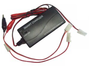 NiMH/NiCd Battery Packs 7.2V - 12V Smart Universal Charger pictures & photos