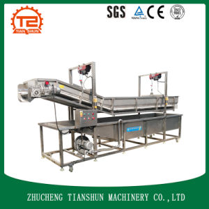 Vegetable and Fruit Washing Machine by Pressure Washer with Ce pictures & photos