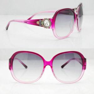 Designer Sunglass Women Sunglasses Name Brand Ladies Sunglasses Sch078s 074 Purple pictures & photos