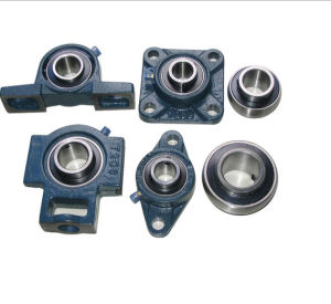 Lubrication Bearing Sizes Pillow Block Bearings 204 pictures & photos