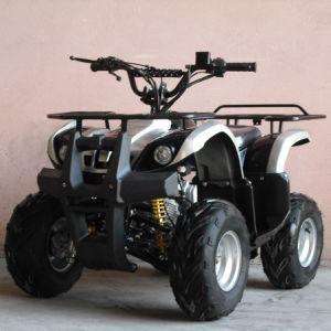 110CC ATV Quads with Front&Back Strong Shelf (ET-ATV004) pictures & photos