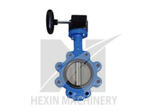 Cast Iron Valve Body with Precision Casting pictures & photos
