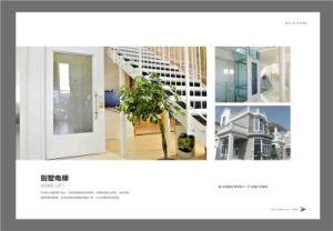 ISO9001 Passenger Sightseeing/Residential Elevators Home/ Villa Elevator pictures & photos