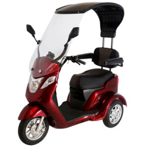 Zvgreen Hot Sale High Quality Three Wheel Electric Scooter pictures & photos