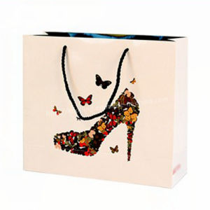 Custom Plastic/Paper Shopping Packaging Bags/Special Design Paper Handbag pictures & photos