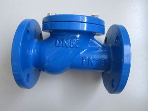 DIN 3352 Ggg40 Ball Type Check Valve Pn16/Pn10 pictures & photos