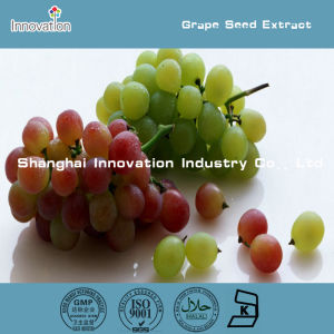 Pure Natural Grape Seed Extract, Pure Grape Seed Extract Powder, Grape Seed Plant Extract