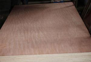 Poplar Okoume Bintangor Birch Veneered Commercial Plywood pictures & photos