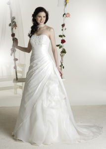 Popular A-line taffeta applique Bridal Wear (C5118)