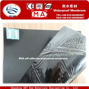 CE Approved Waterproofing Material EVA Self-Adhere Water Board, PVC Membrane pictures & photos