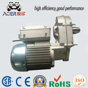 China Variable Speed Low Rpm Gear Motor Electric China