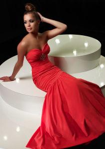 Sexy Evening Dress (AL6441)