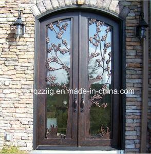 Decorative and Elegant Main Entry Steel Door