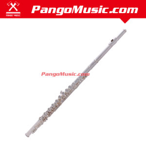 C Tone Cupronickel Body 16 Holes Flute with E Mechanism (Pango PMFL-800) pictures & photos