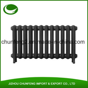 Short Princess 2 Column 560mm Cast Iron Radiators pictures & photos