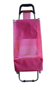 Beautiful Shopping Trolley Bag Yx-100