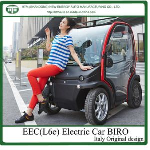 Electric Golf Cart L6e (BIRO) 2kw*2 Hub Motor