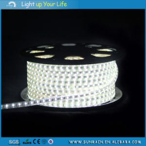 Outdoor IP44 3528 & 5050 220V Flexible LED Strip Light pictures & photos