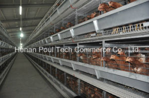 New Type Poul Tech Layer Chicken Cage System pictures & photos