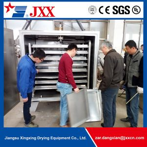 Hot Sell High Quality Fruit Drying Vacuum Tray Dryer pictures & photos