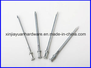 Polished Duplex Nails for Sale pictures & photos