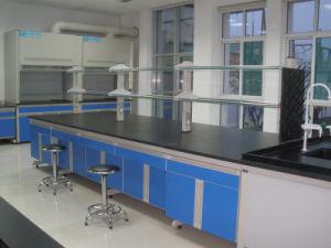 Laboratory Furniture/Lab Work Bench/School Furniture pictures & photos