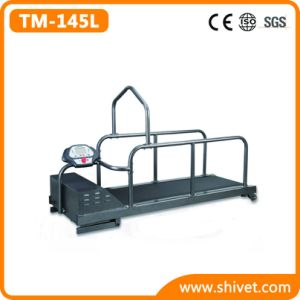 Incline Dog Treadmill Indoor Exercise (UP to 100Kg) (TM-145L) pictures & photos