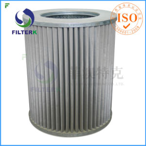 G 6.0 Natural Gas Filter Cartridge pictures & photos