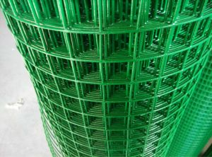 PVC Coated Net Can Customize Different Size pictures & photos