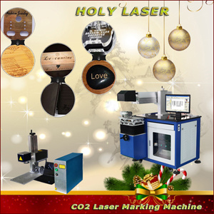 60W CO2 Laser Marking Machine From Holylaser pictures & photos