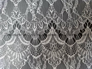 100% Nylon Lace Fabric for Ladies′ Garment pictures & photos