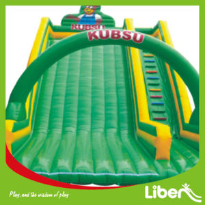 Exciting Inflatable Amusement Park (LE. CQ. 069) pictures & photos