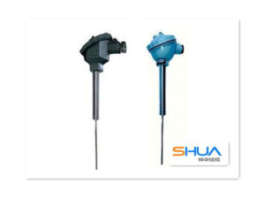 Straight Fittings Thermocouple pictures & photos