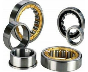 China Bearing, Cylindrical Roller Bearing Nup308, N408, Nu408, Nup408, Nj408, Nu2208, Nup2208, Nj2208, Nu2308, Nj2308, Nup2308, Nn3008 pictures & photos