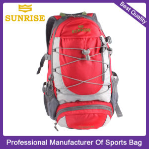 OEM Outdoor Travel Backpack Bags for School Student, Youth, College