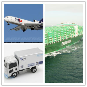 Professional Consolidate Shipping Service From China to Dubai Shipping pictures & photos